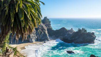 piękna plaża ze skałami i palmą